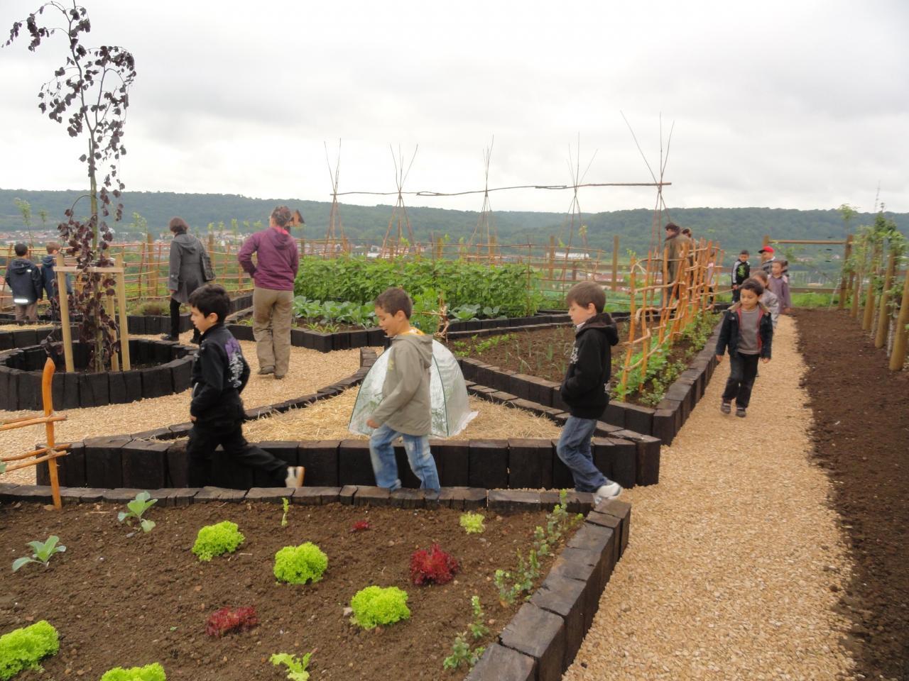 entretien du jardin par les scolaires
