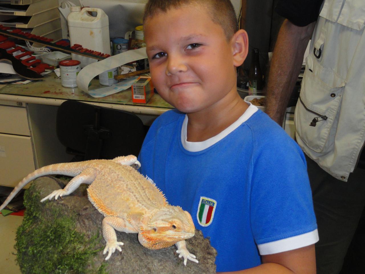 les enfants découvrent les animaux