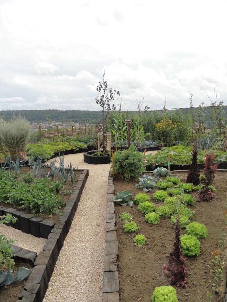 vue de l'hortus, prise à l'entrée août 2012