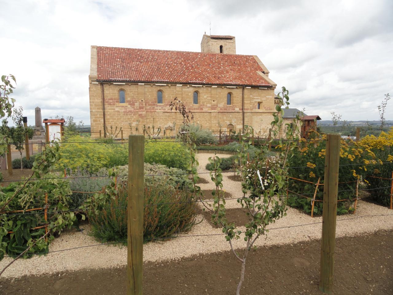 vue de l'herbalurius prise de l'hortus août 2012