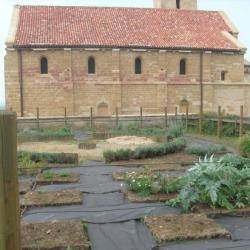 jardin fin juillet 2011
