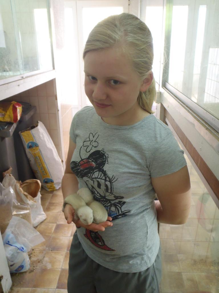 les enfants apprennent à soigner les animaux, ici des bébés furets