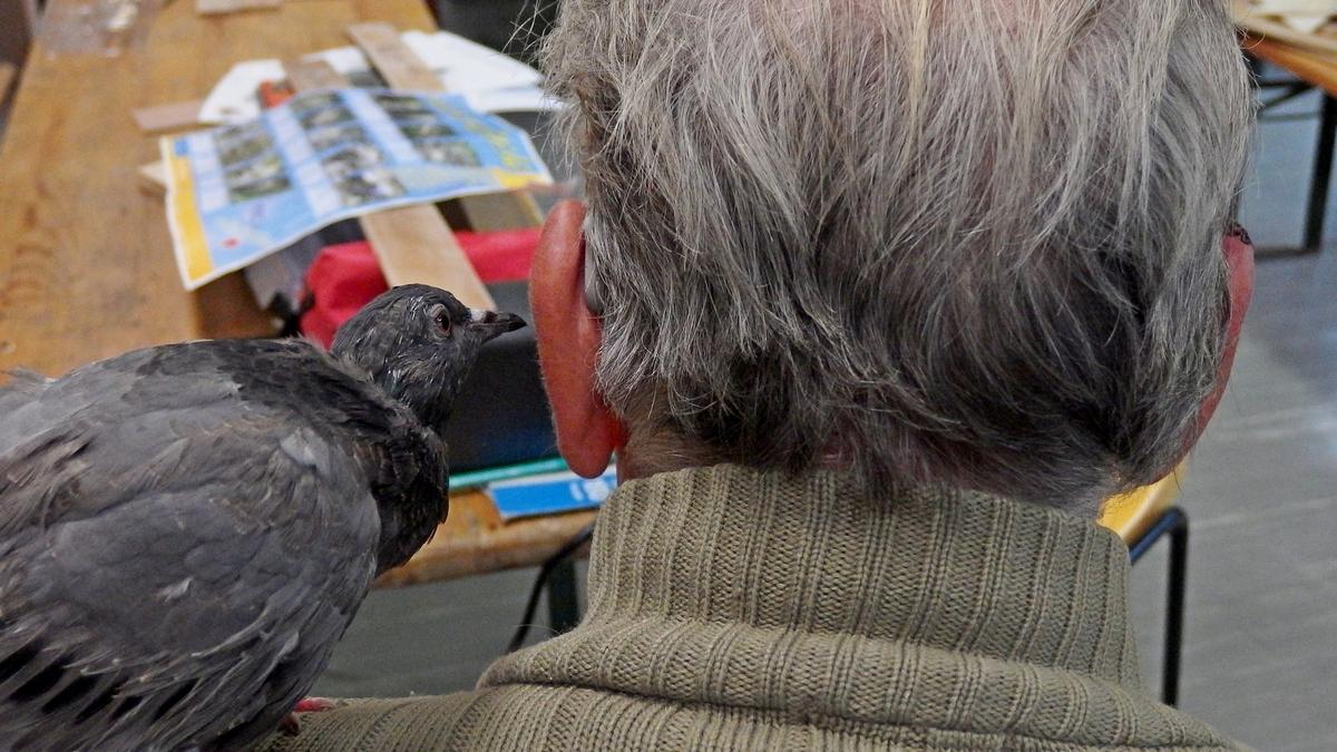 L'homme qui parlait à l'oreille des pigeons...ou l'inverse!