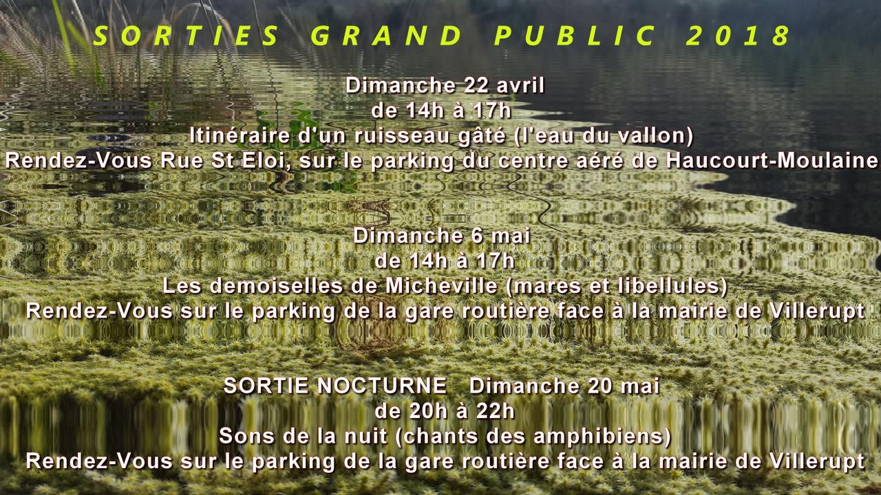 Grand public 5
