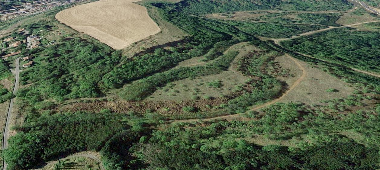 Plateau aalenien